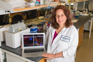 Upstate researcher awarded grants  to research eye scarring,  glaucoma